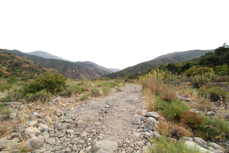 32633-Trabuco-Canyon-Rd-Mitchell-East-Trabuco-Canyon_56.JPG