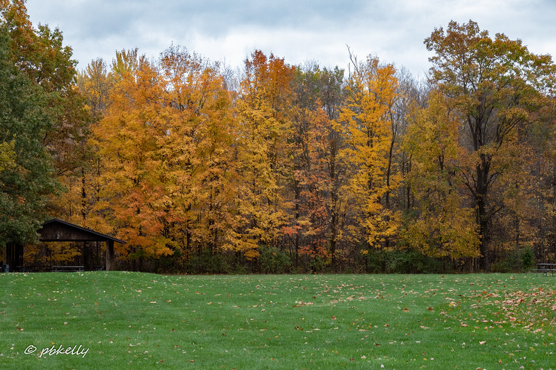 Indian Hollow color 102420-3.jpg