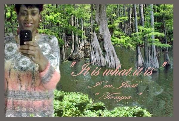 swamp_edited-1.jpg