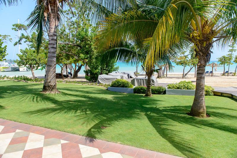 Love the palm tree shadow here
