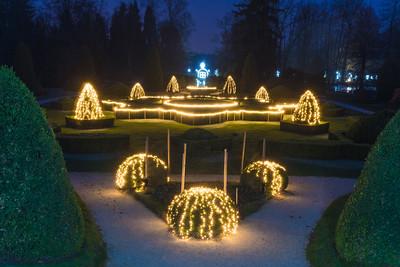 Festive Arboretum - Dec 12, 2019