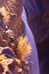 Pink Bush Falls