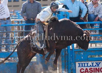 Bull Riding- Sunday