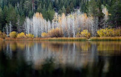 Eastern Sierra, CA, Oct 20-21, 2014