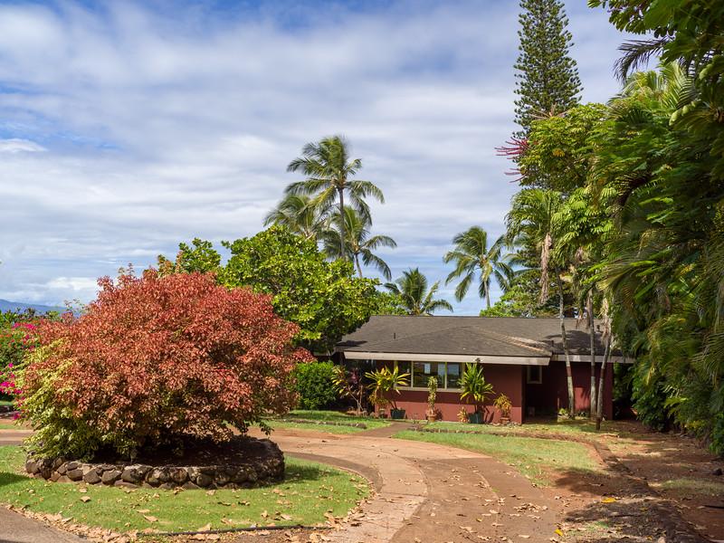 -Hawaii 2018-B1012827-20181012.jpg