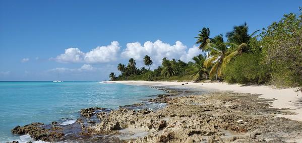 Caribbean Sea - Saona Island 2020
