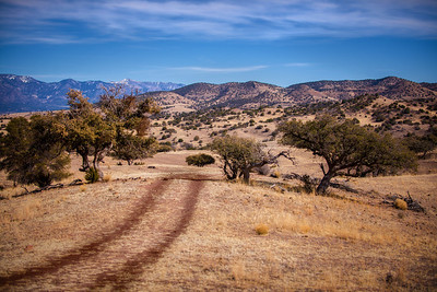 Mule Creek 2013/01/23