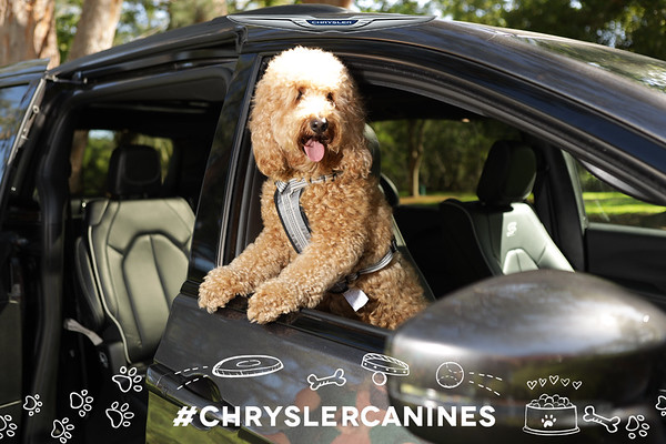CHRYSLER NATIONAL DOG DAY - SHARING KIOSK