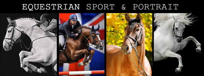 equine portrait final copy copy copy.jpg