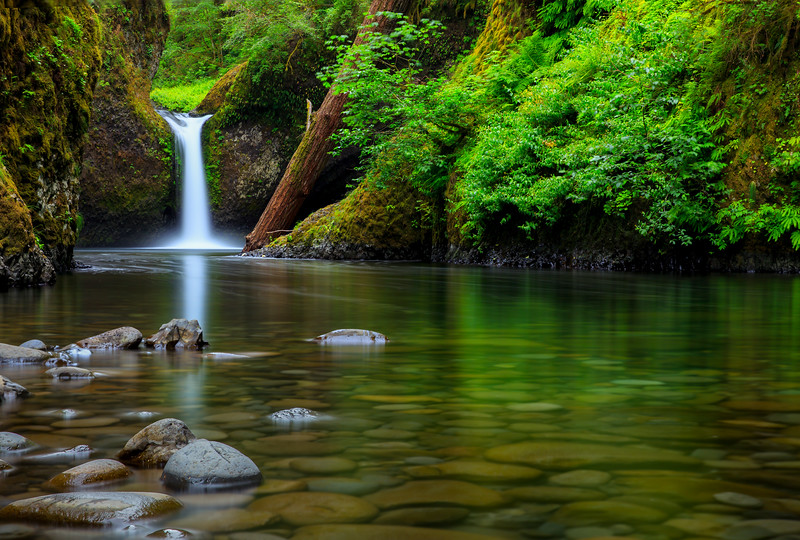 Oregon Beatuty _K4A8290-Edit-2-Edit.jpg