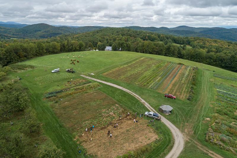farm day fall 2018-161.jpg