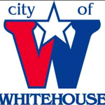 whitehouse-voters-approve-7-city-charter-amendments-writein-candidate-leads-place-1-city-council-race