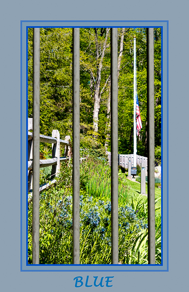 2020-Week 20 - Blue-Looking in at Leonard Buck Garden.jpg