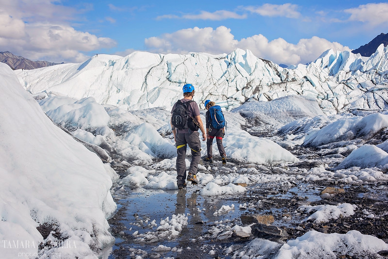 Glacier12-5.jpg