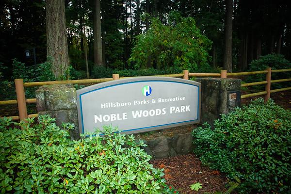 Nobel Woods Park Fall 2014