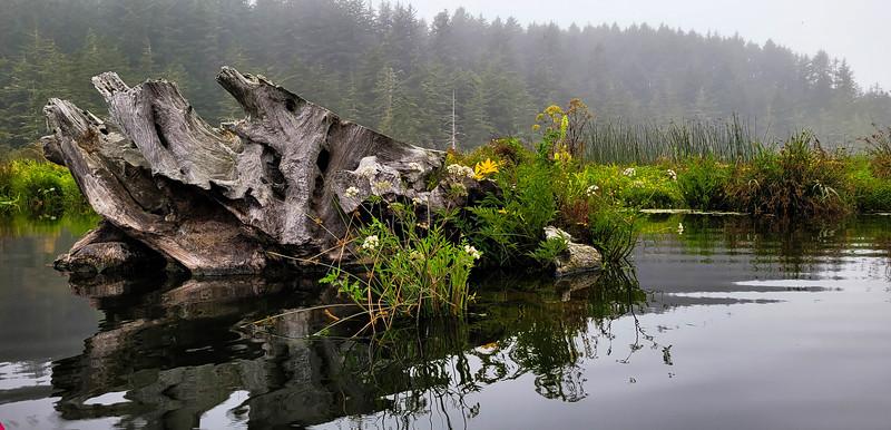 08-05-2021 Beaver Creek Kayak with Dan and Kalli-10.jpg