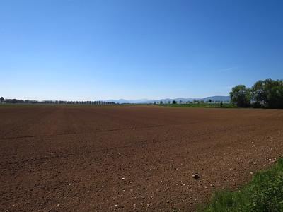 170430 Bergheim