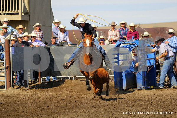 Pendleton Oregon Breakaway Roping Sept 15, 2019