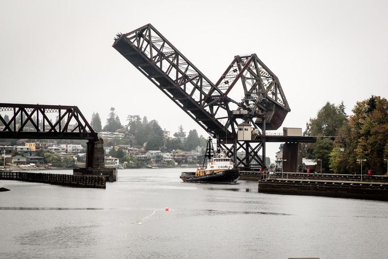 The Locks in Seattle