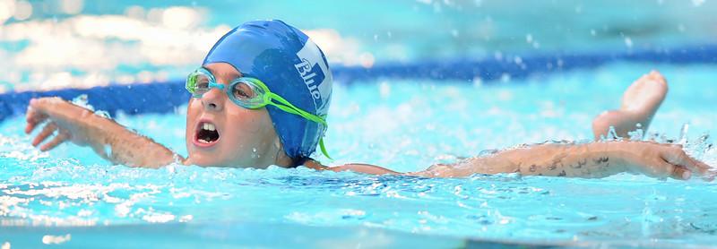 SAIL Swim Actions Heats Up