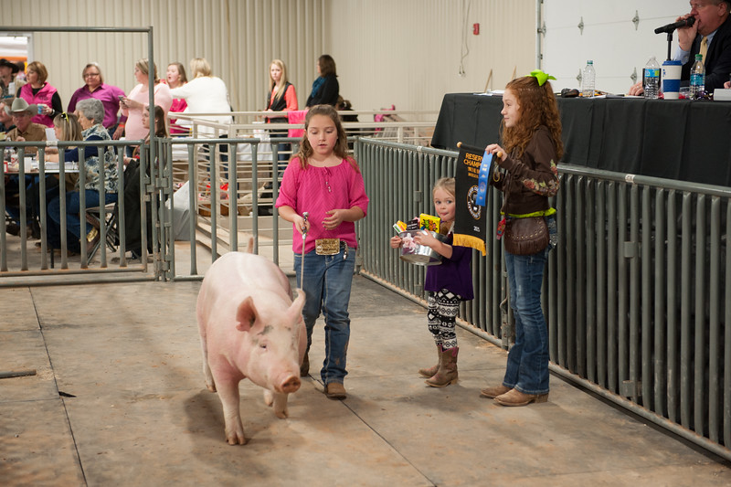 Hays County Show-9823.jpg