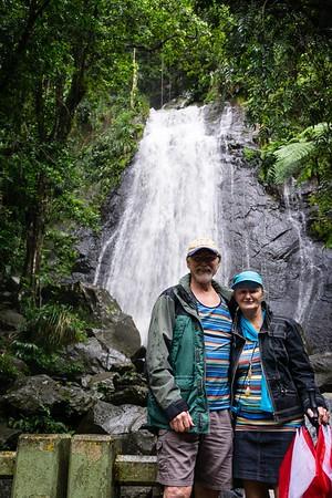 Rainforest Road Trip