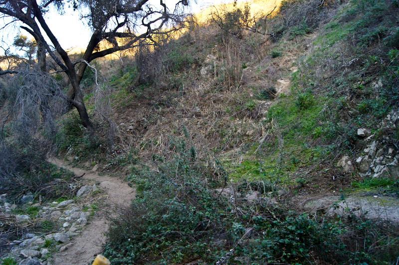 20120113009-El Prieto Trailwork Prep.jpg