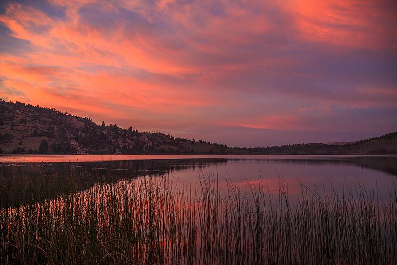 June_Lake_Eastern_SierraIMG_7887.jpg