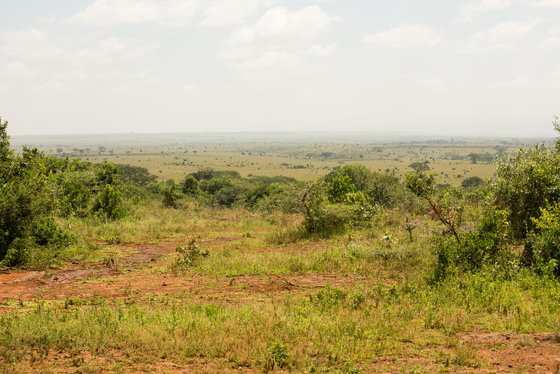 kenya-5793.jpg