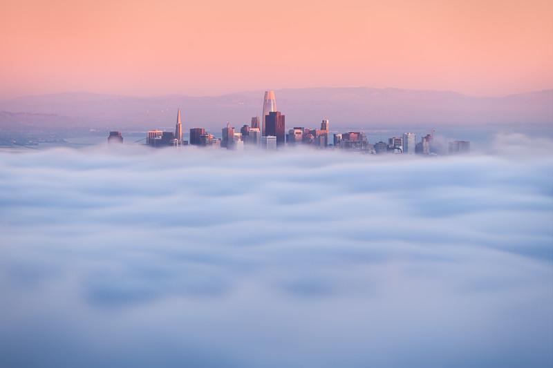 sf_fog_skyline_2020_print.jpg