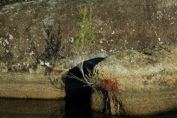 Girraween National Park - Queensland, Australia