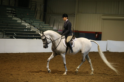 125 734 HA/AA Hunter Pleasure Open  Championship