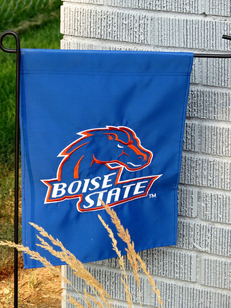 Out and About in Boise