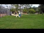 short soccer sequence.mpg