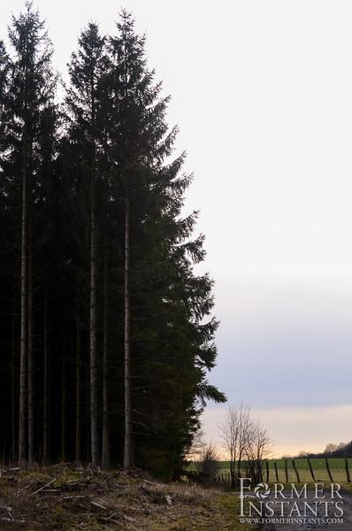 ardennes-78.jpg