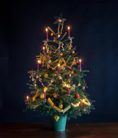 Christmas Tree - 2/25/14