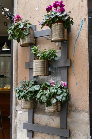Sharon's Italy Photos