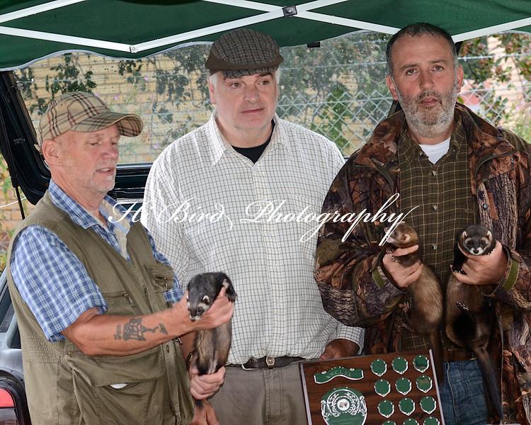 Ferret Champ winner  2227.jpg