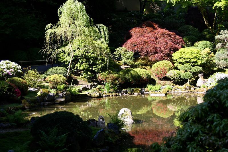 Portland Japanese Garden 6-3-11  1806.jpg