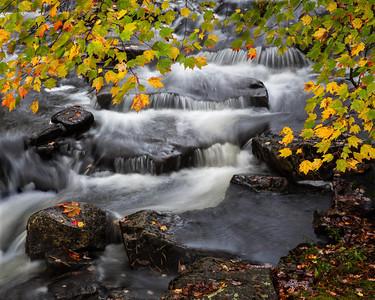 Acadia Fall 2012