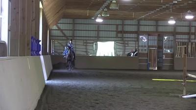 TSRC 2019-06-03 Milestone Sport Horses Video