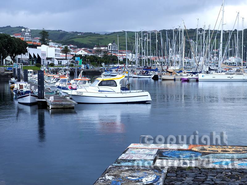 Blick in den Hafen, Marina von Horta, Faial, Azoren, Portugal