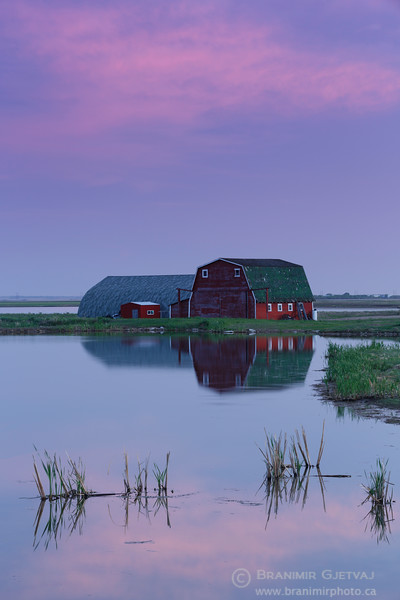 Red barn and pond at sunset. Aberdeen, Saskatchewan