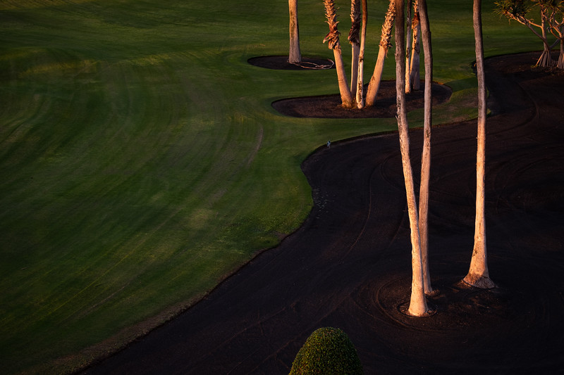 Golf Adeje_20191106_8413.jpg