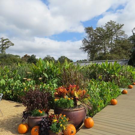 Shangri La Garden in Orange Texas 2015