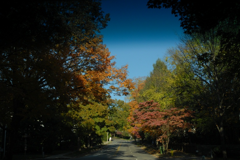 On the way to Maple Hill Cemetery