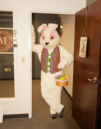 Easter Bunny Builds Momentum