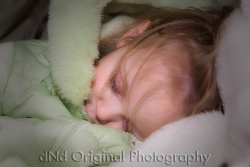 Brielle Sleeping After Walk Jan 2009 (nik softfocus vig).jpg