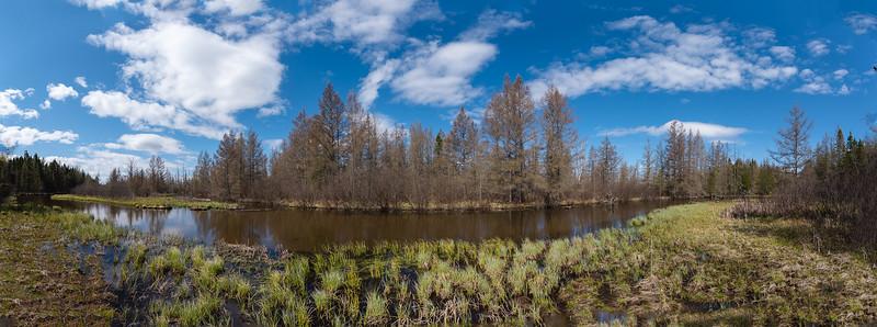 HW_2487-Serenity-Pines-Ct_0023.jpg