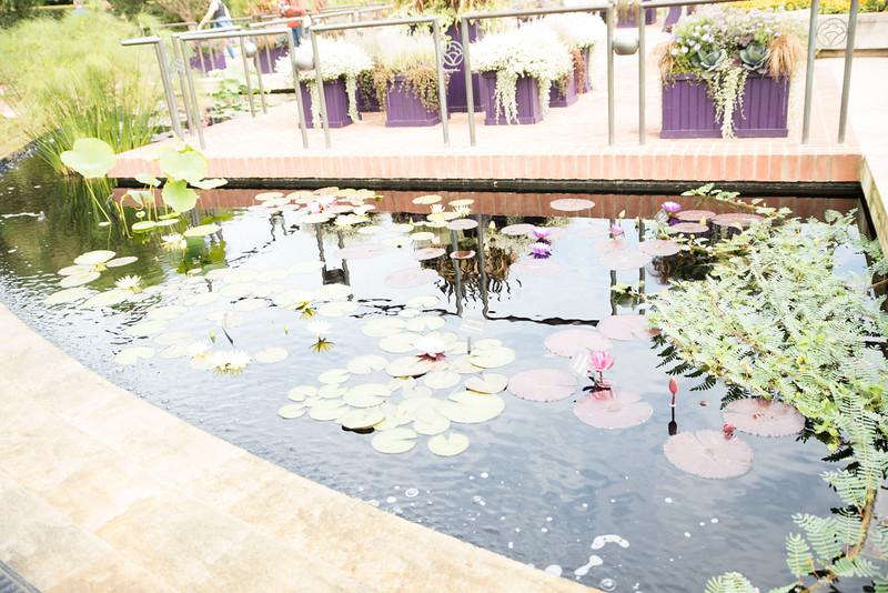 Chicago Botanic Garden 046.jpg